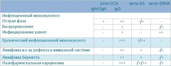 Анти ЭБВ-тела