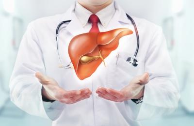 Правильные терапия и диета (гепатит С) способны победить болезнь